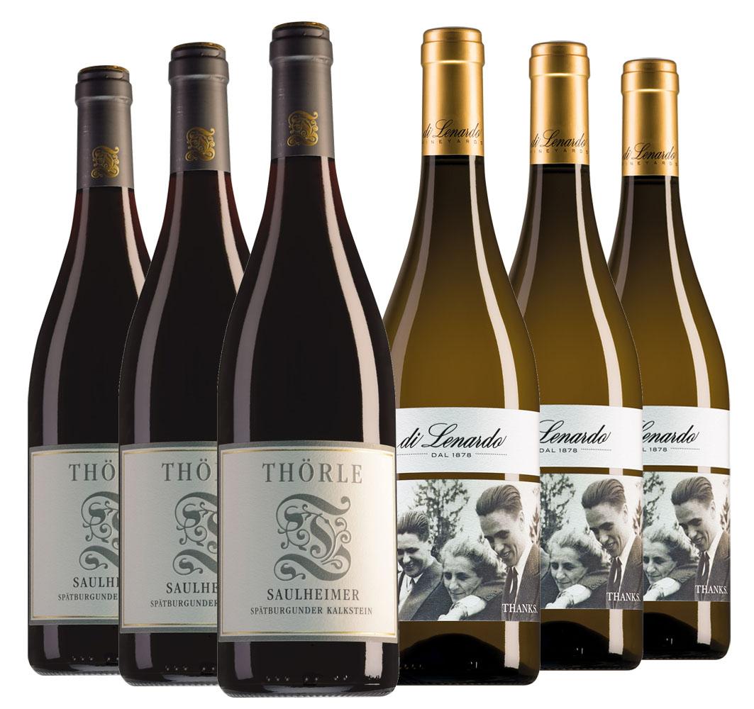 Weingut Thörle Rheinhessen Saulheimer Kalkstein Spätburgunder