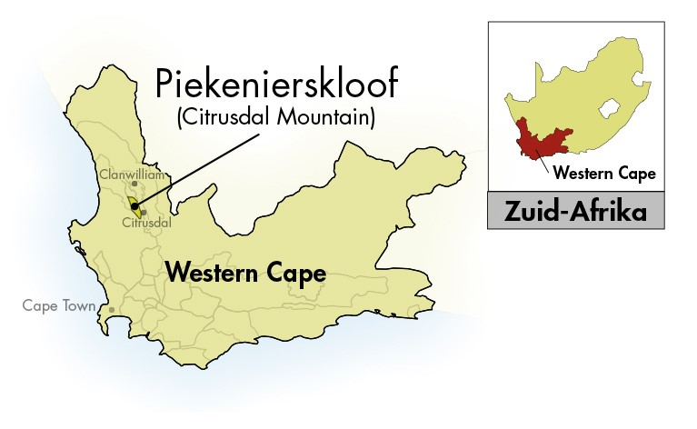 Nieuwe Trek Western-Cape Chenin Blanc