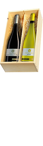 Collefrisio Montepulciano en Trebbiano Filarè 2 flessen in houten kist