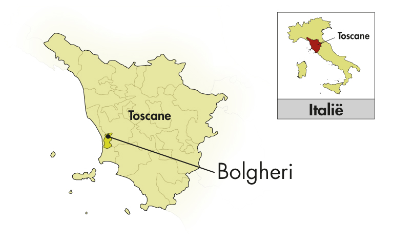 Campo alla Sughera Toscana Rosso IGT Supertuscan