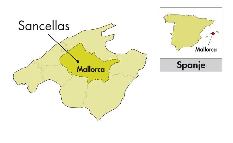 Son Prim Mallorca Cabernet Sauvignon